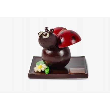 Carré de l'été blanc orange sanguine
